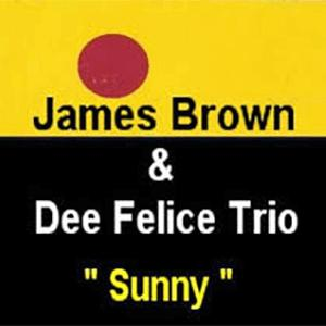 James Brown and Dee Felice Trio - Sunny